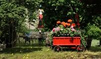 Nachbars Vorgarten